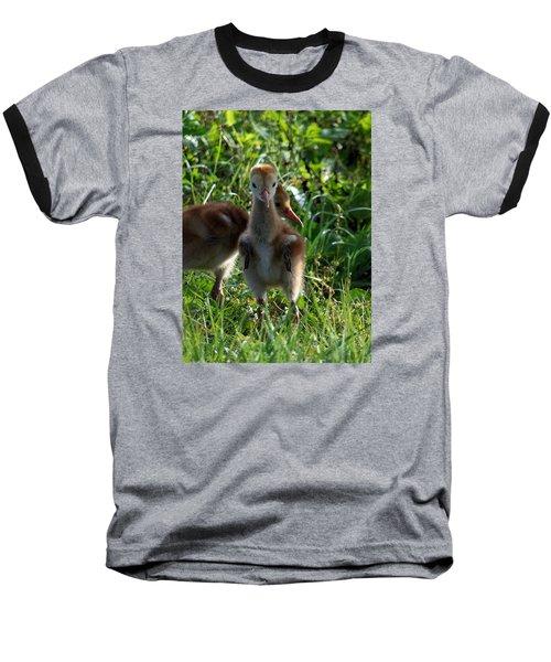 Sandhill Crane Chick 086  Baseball T-Shirt by Chris Mercer