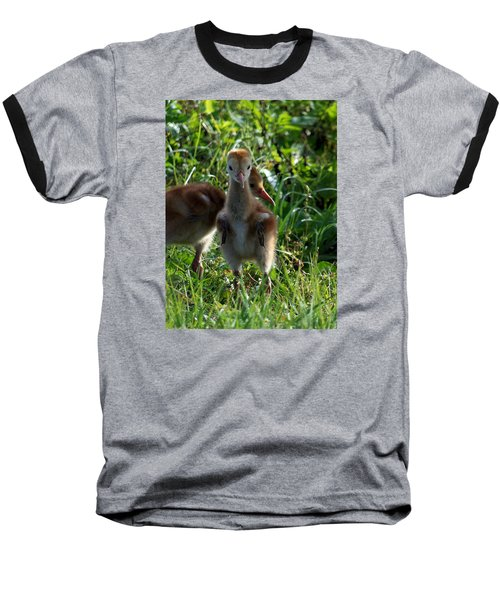 Baseball T-Shirt featuring the photograph Sandhill Crane Chick 086  by Chris Mercer