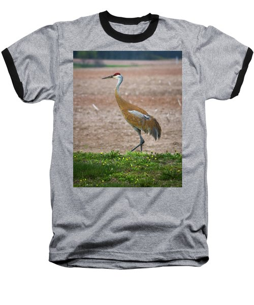 Baseball T-Shirt featuring the photograph Sandhill Crane In Profile by Bill Pevlor