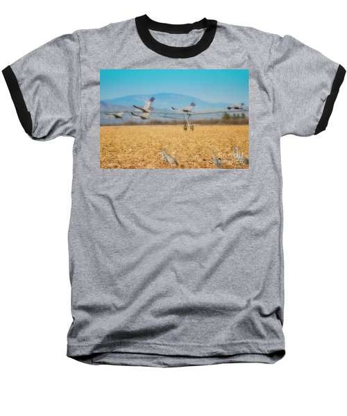 Sandhill Cranes In Flight Baseball T-Shirt by Donna Greene