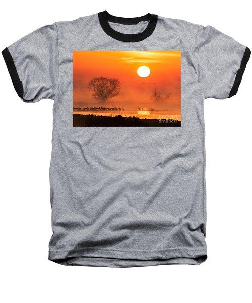 Sandhill Cranes In The Misty Sunrise Baseball T-Shirt