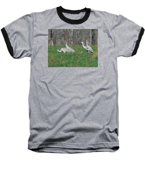 Sandhill Cranes Baseball T-Shirt