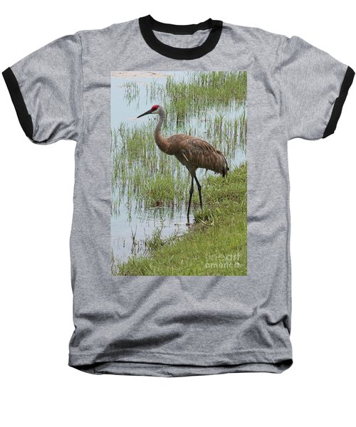 Sandhill In The Marsh Baseball T-Shirt