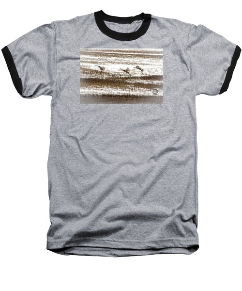 Baseball T-Shirt featuring the photograph Sandhill Touch Down by Daniel Hebard