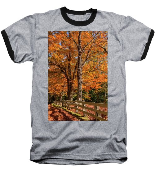 Sandwich Autumn Baseball T-Shirt