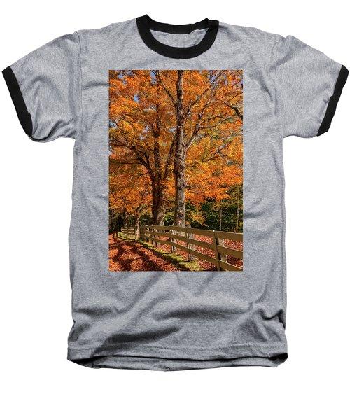 Sandwich Autumn Baseball T-Shirt