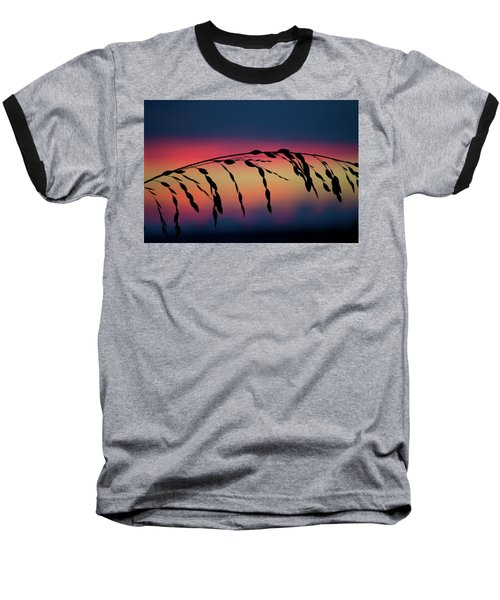 Sanibel Sea Oats Baseball T-Shirt