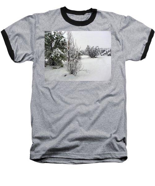 Santa Fe Snowstorm 2017 Baseball T-Shirt by Joseph Frank Baraba