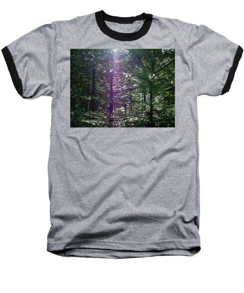 Saplings In The Sun Baseball T-Shirt
