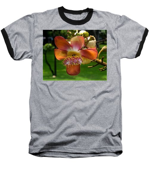 Sara Tree Flower Dthb104 Baseball T-Shirt by Gerry Gantt
