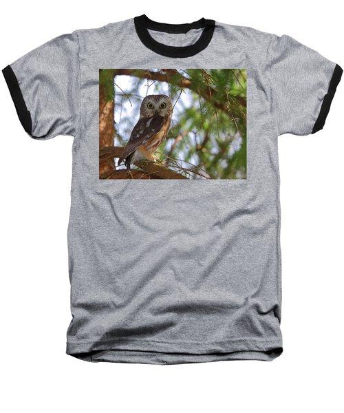Saw-whet Owl Baseball T-Shirt