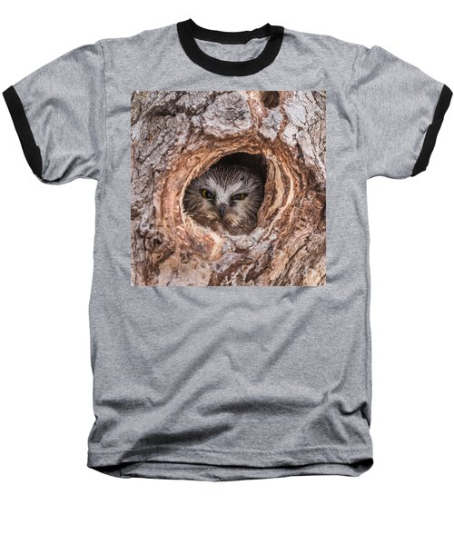 Saw-whet Secret Baseball T-Shirt