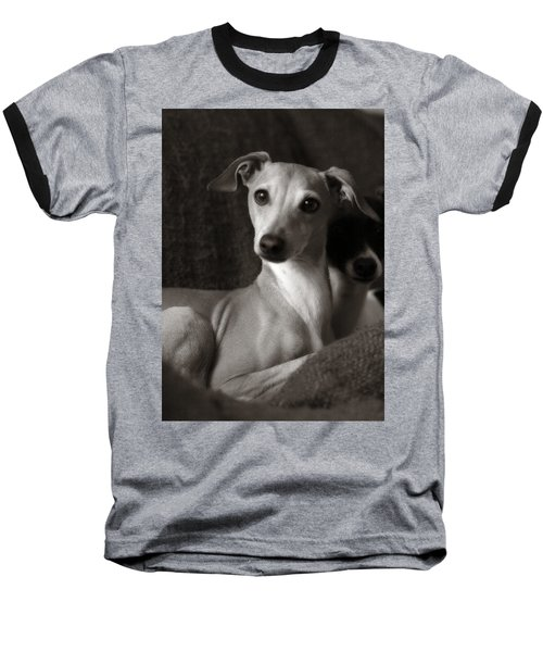 Say What Italian Greyhound Baseball T-Shirt