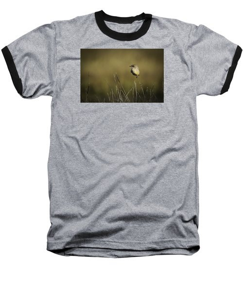 Say's Flycatcher Baseball T-Shirt
