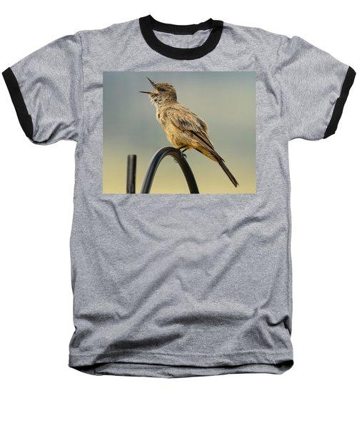 Say's Phoebe Singing Baseball T-Shirt by John Brink