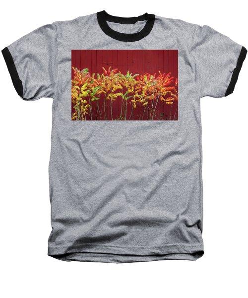 Scandinavia Sumac Baseball T-Shirt