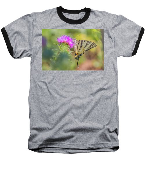 Scarce Swallowtail - Iphiclides Podalirius Baseball T-Shirt