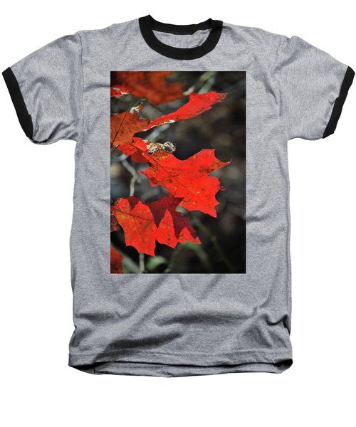 Scarlet Autumn Baseball T-Shirt