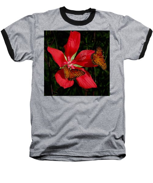 Scarlet Beauty Baseball T-Shirt