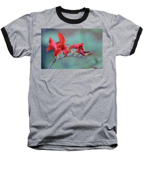 Scarlet Blooms Baseball T-Shirt by Janet Rockburn