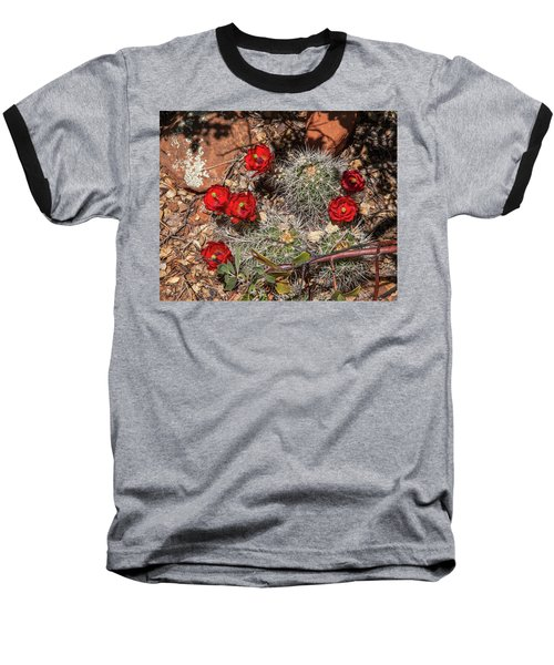 Scarlet Cactus Blooms Baseball T-Shirt