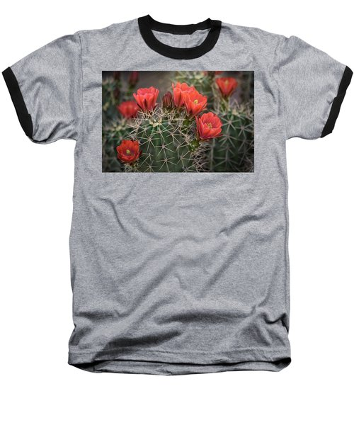 Baseball T-Shirt featuring the photograph Scarlet Hedgehog Cactus  by Saija Lehtonen