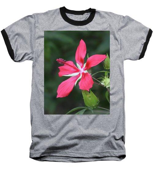 Scarlet Hibiscus #4 Baseball T-Shirt