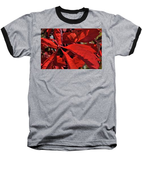 Baseball T-Shirt featuring the photograph Scarlet Intensity by Ron Cline