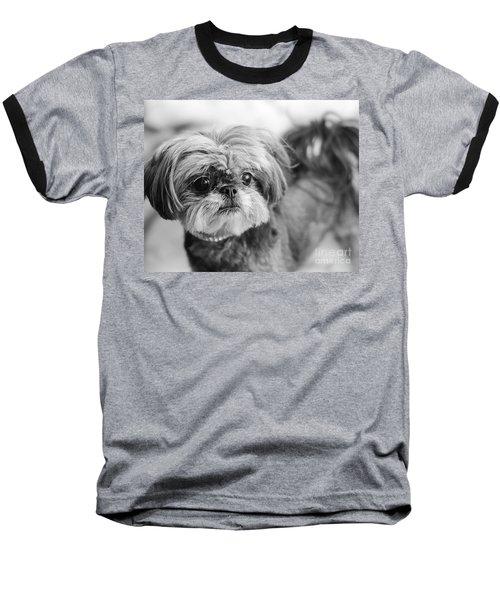 Scarlett B And W Baseball T-Shirt