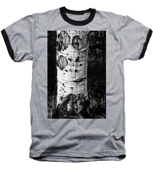 Scarred Old Aspen Tree Trunk In Colorado Forest Baseball T-Shirt by John Brink