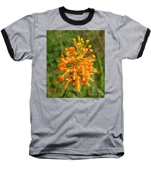 School Bus Yellow Baseball T-Shirt by Lew Davis