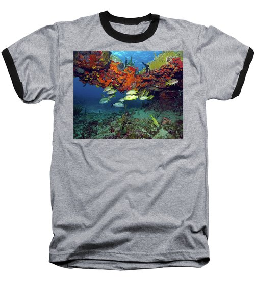 Schooling Fish At Calf Rock Baseball T-Shirt