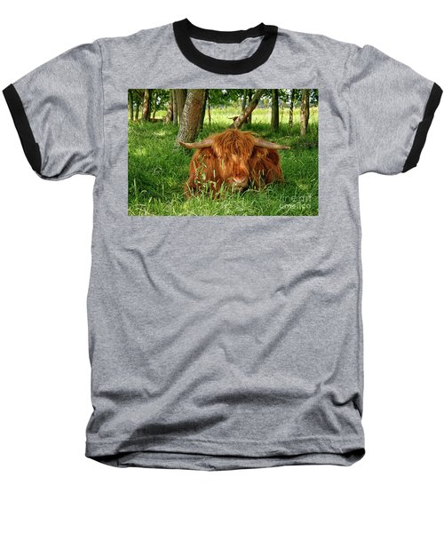 Baseball T-Shirt featuring the photograph Scottish Higland Cow by Patricia Hofmeester