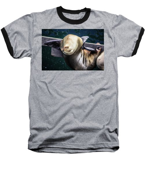 California Sea Lion - Scratch The Itch Baseball T-Shirt