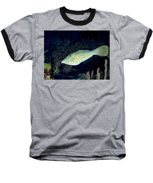 Baseball T-Shirt featuring the photograph Scrawled Filefish by Jean Noren