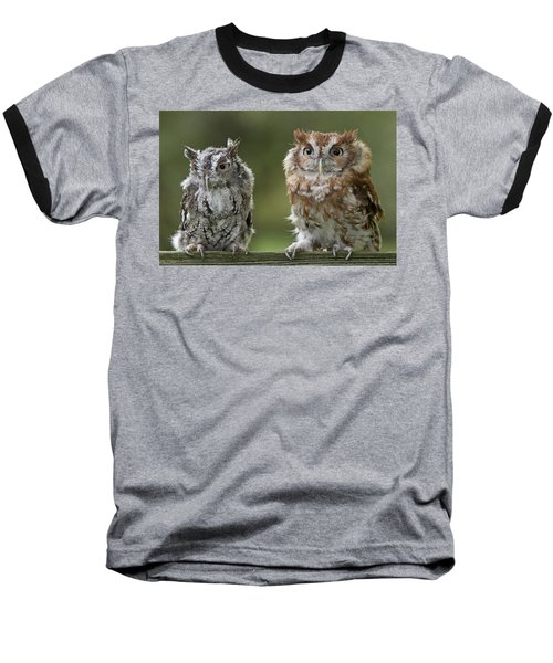 Screech Owl Pair Baseball T-Shirt