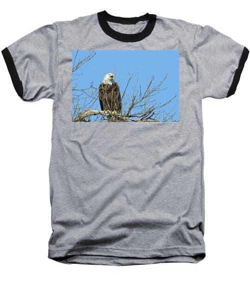 Screeching Eagle Baseball T-Shirt by Brook Burling