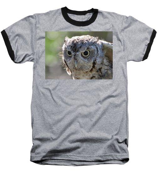 Screechowl Focused On Prey Baseball T-Shirt