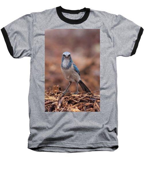 Scrub Jay On Chop Baseball T-Shirt