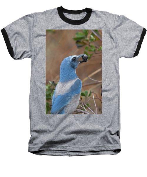 Scrub Jay With Acorn Baseball T-Shirt