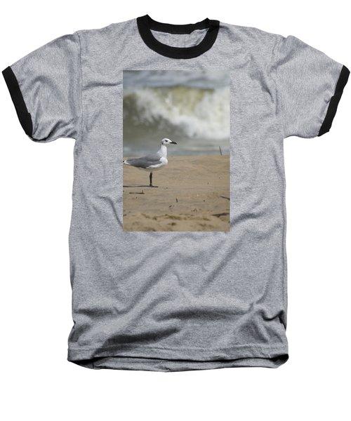 Sea Gull Baseball T-Shirt