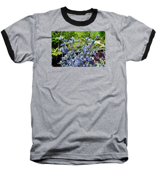Baseball T-Shirt featuring the photograph Sea Holly Blooming by Tanya Searcy