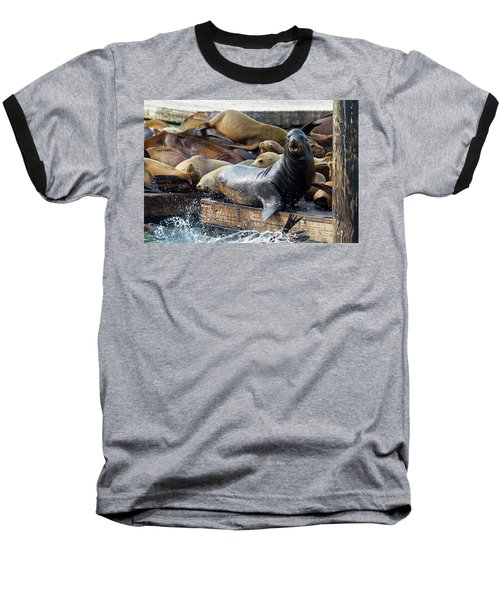 Sea Lions On The Floating Dock In San Francisco Baseball T-Shirt