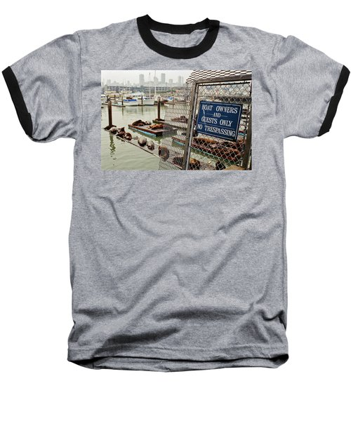 Baseball T-Shirt featuring the photograph Sea Lions Take Over, San Francisco by Frank DiMarco
