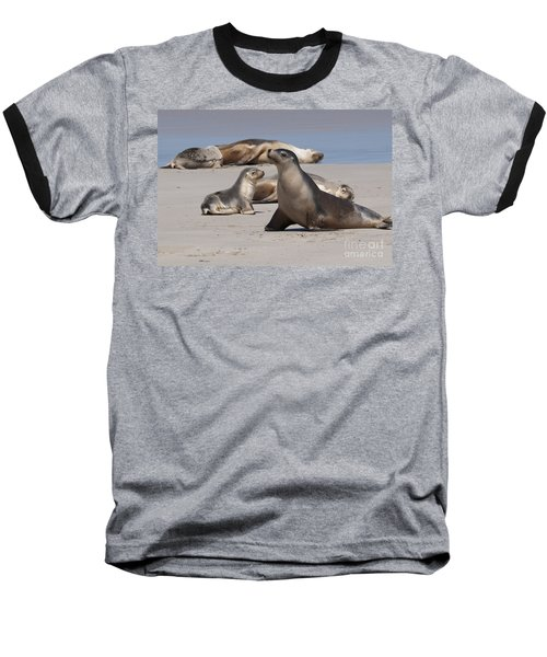 Baseball T-Shirt featuring the photograph Sea Lions by Werner Padarin