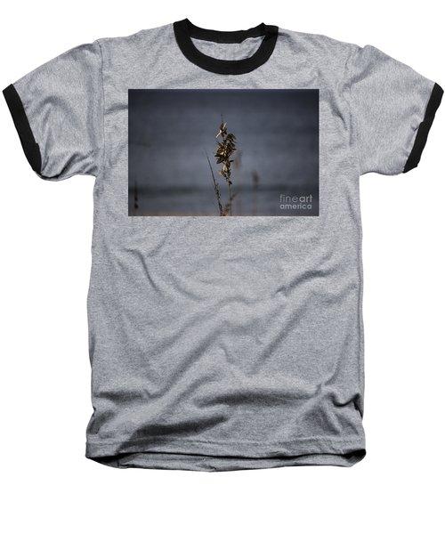 Sea Oat Baseball T-Shirt