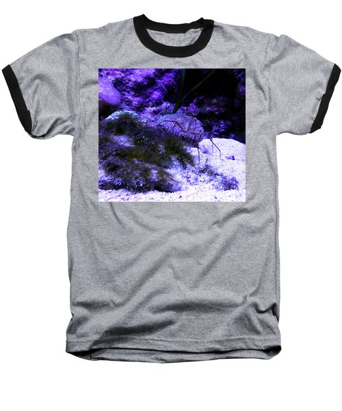 Baseball T-Shirt featuring the photograph Sea Spider by Francesca Mackenney