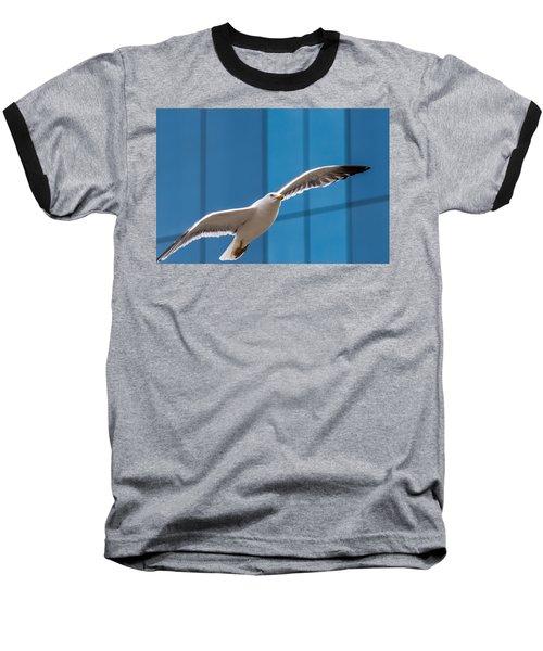 Seabird Flying On The Glass Building Background Baseball T-Shirt