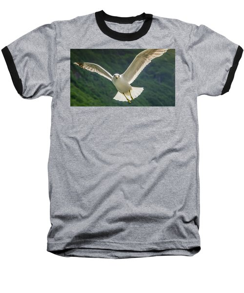 Seagull At The Fjord Baseball T-Shirt by KG Thienemann