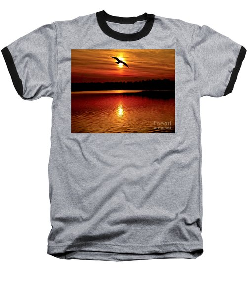 Seagull Homeward Bound Baseball T-Shirt